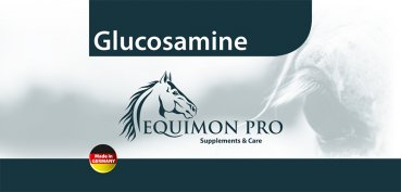 Glucosamine for tendons, ligaments and joints