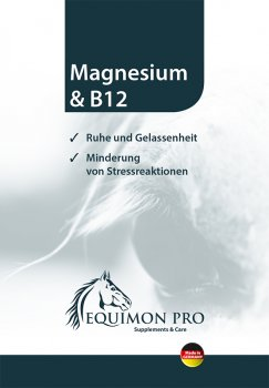 Vitamin preparation - Magnesium & B12